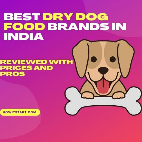 15 Best dry dog food Brands in India – Review with prices